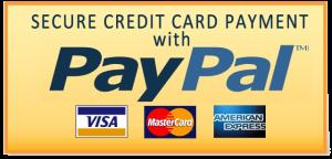 Visa, MasterCard, American Express, & Maestro, Union Pay, Discover, Aurora